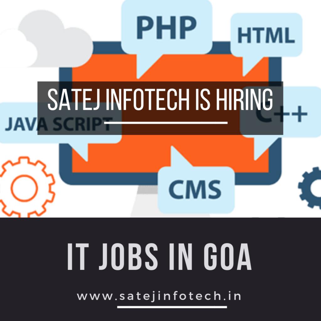 IT Jobs in Goa Web Developer Jobs in Goa Web Designing Course in Goa